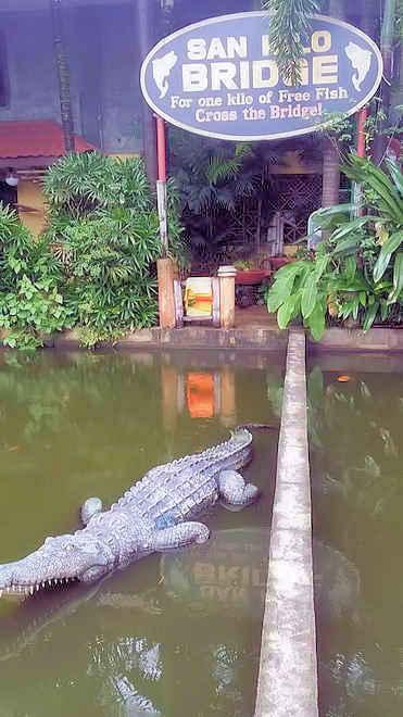 isdaan-restaurant-krokodile-parcour