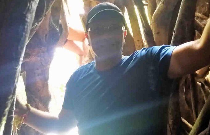 tree-caving