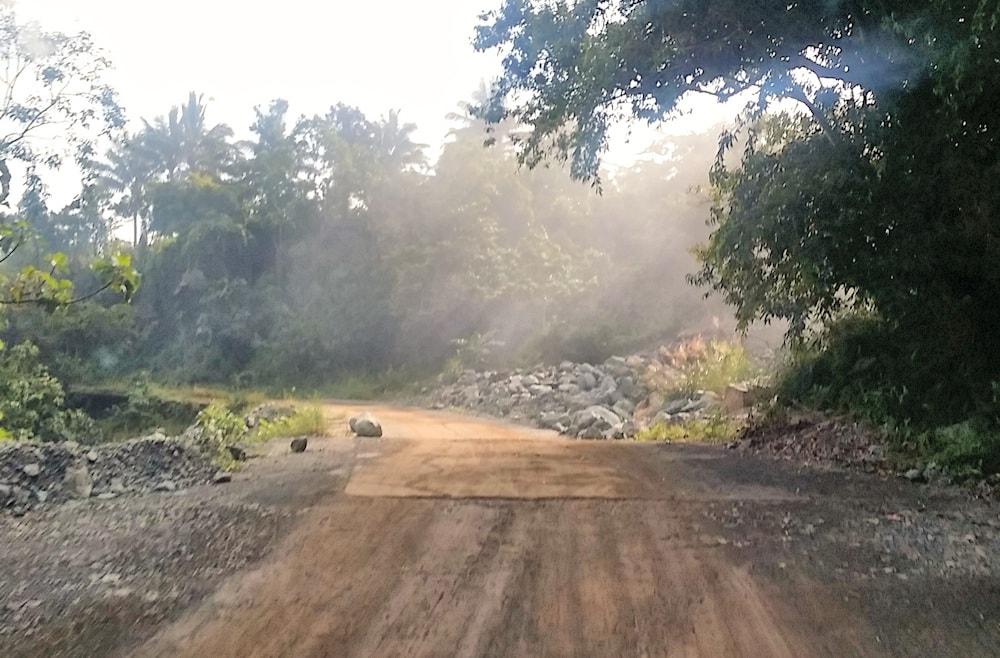 fogy-street