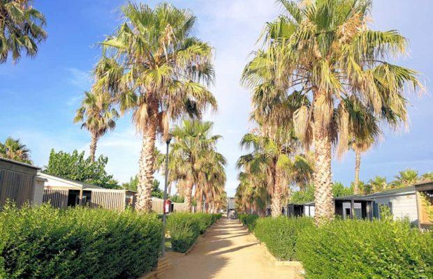mainroad-bungalowarea
